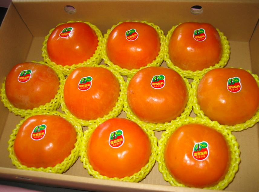 【松原農庄】日本品種-摩天嶺高山甜柿 - 大顆 (4盒)