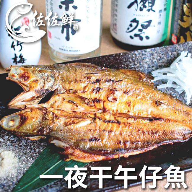 【佐佐鮮】一夜干午仔魚_240g/片
