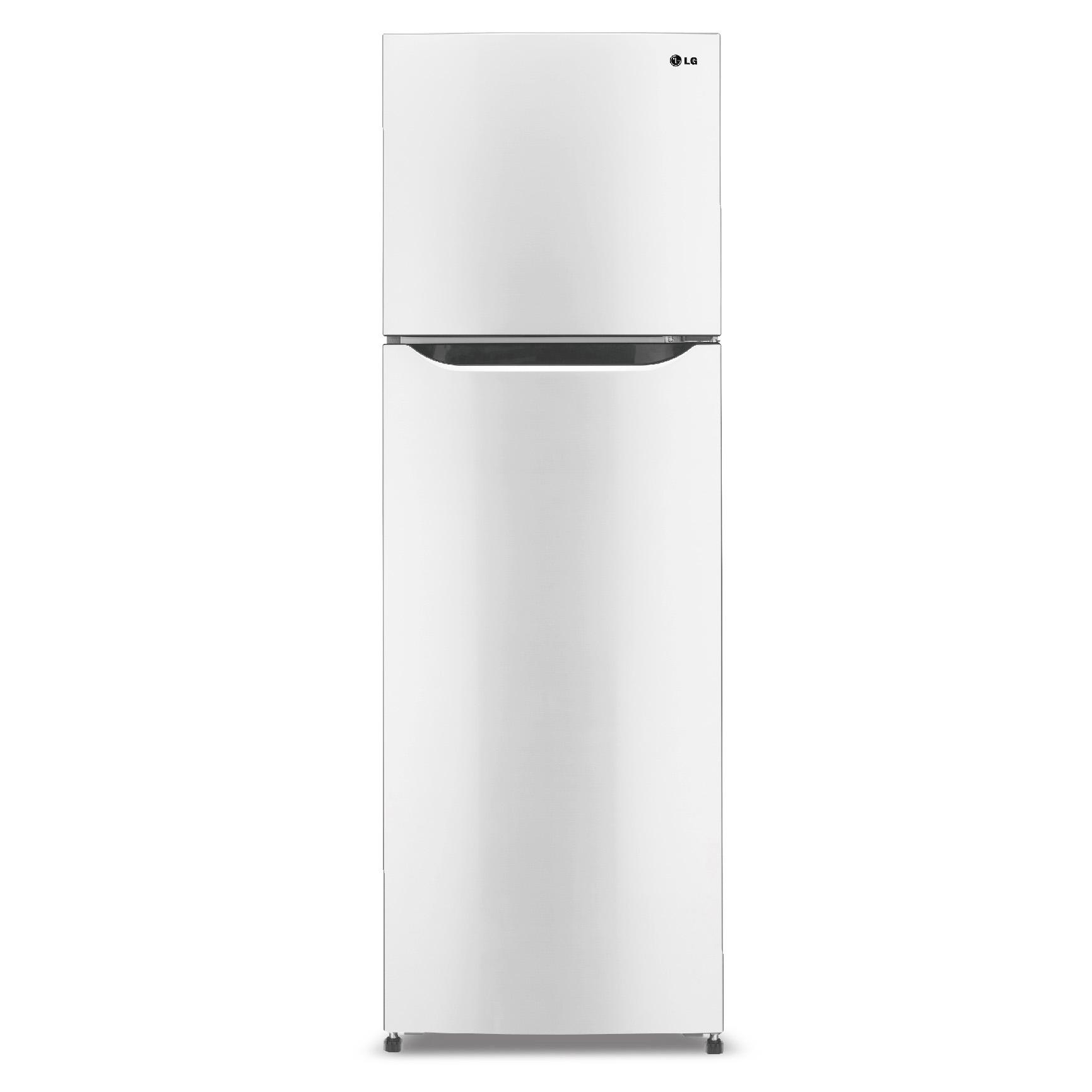 LG 315公升 變頻雙門冰箱 GN-L392W