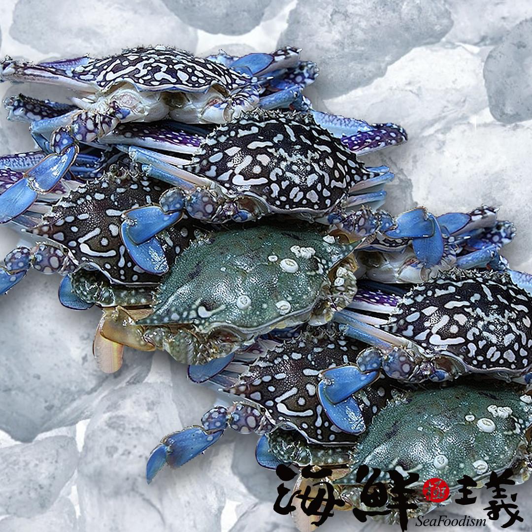 【海鮮主義】佐渡蘭花蟹(公)250g ●嚴選自日本佐渡的蘭花蟹  ●捕捉出水後活體冷凍,鎖住自然鮮甜  ●肉質鮮甜,蟹肉飽滿  ●適合清蒸、燜煮