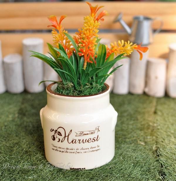 Zakka鄉村風仿舊奶罐造型陶瓷小花器《可當小物置物盒喔》★適合多肉植物/種子盆栽★