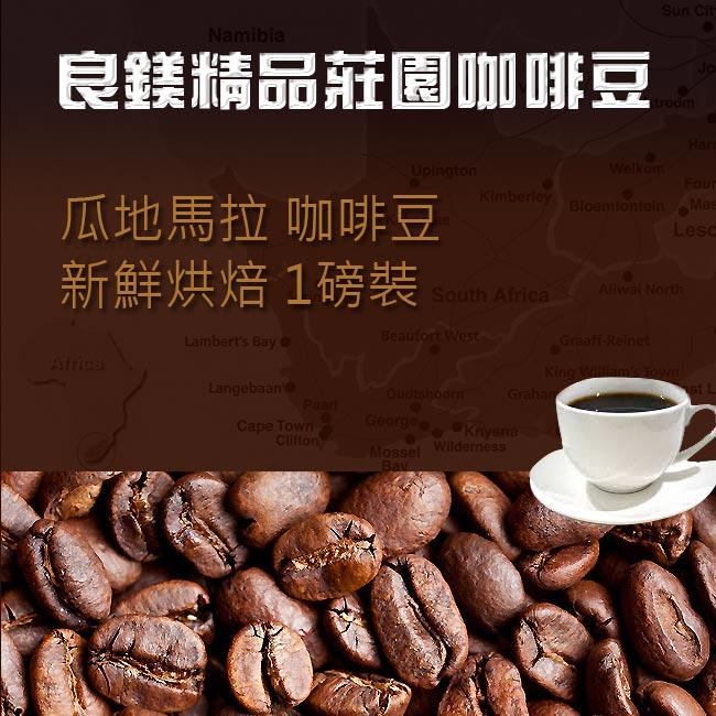 瓜地馬拉 薇薇特南果咖啡豆  新鮮烘焙‧黃金比例 獨家嚴選 1磅裝