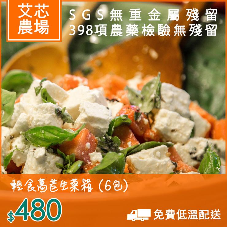 輕食萵苣生菜箱