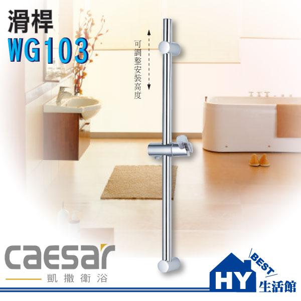 Caesar凱撒衛浴WG103滑桿【SPA淋浴用掛架升降滑桿組】不鏽鋼.ABS材質《HY生活館》水電材料專賣店