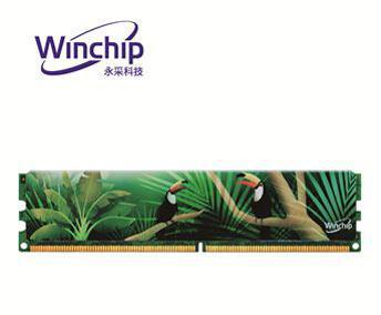Winchip永采科技 2G DDR2 800桌上型記憶體