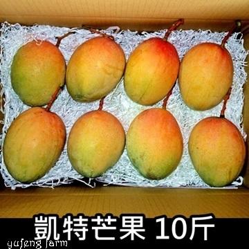 [玉峰]凱特芒果/優級/10斤