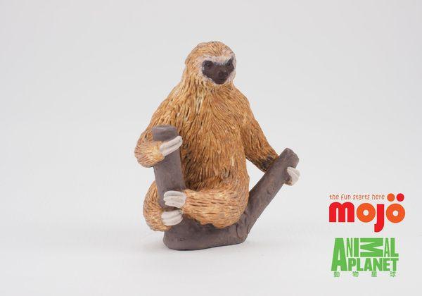 【MOJO FUN 動物模型】二趾樹懶