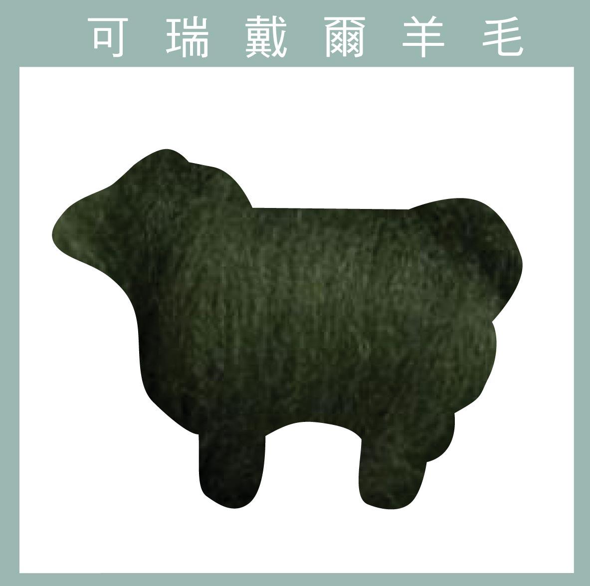 紐西蘭ASHFORD-可瑞戴爾羊毛[30克]-C54蕨葉色