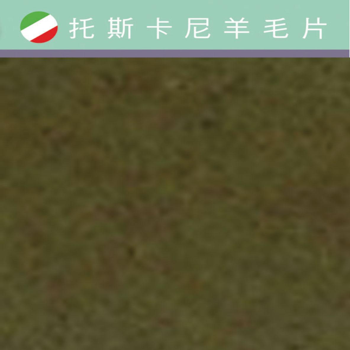 托斯卡尼-羊毛片DP609長春藤