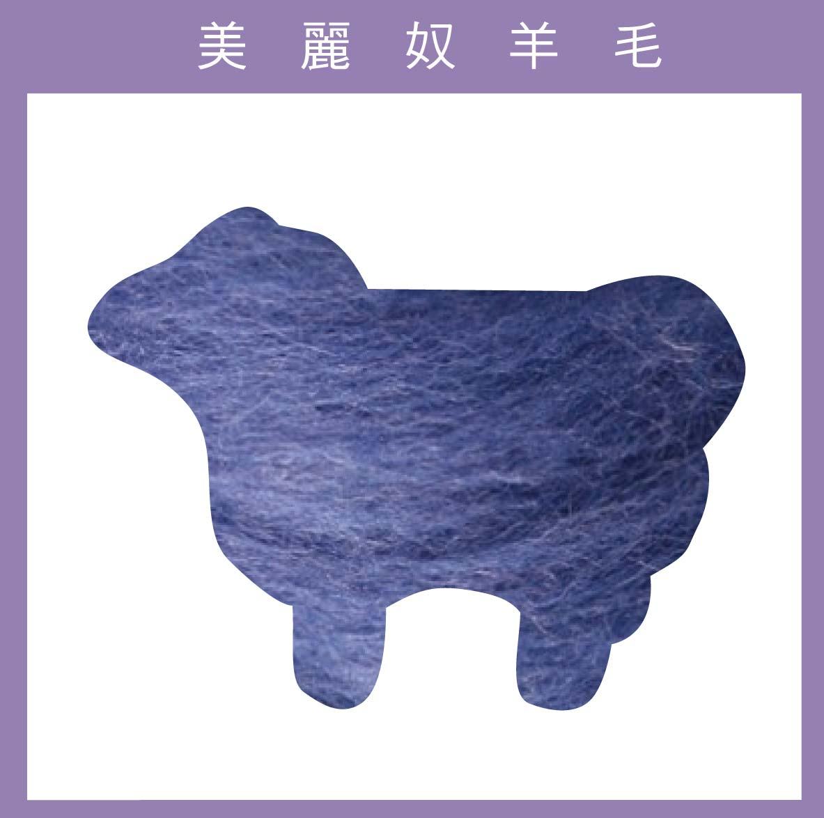 紐西蘭ASHFORD-美麗奴羊毛 M09藍莓色