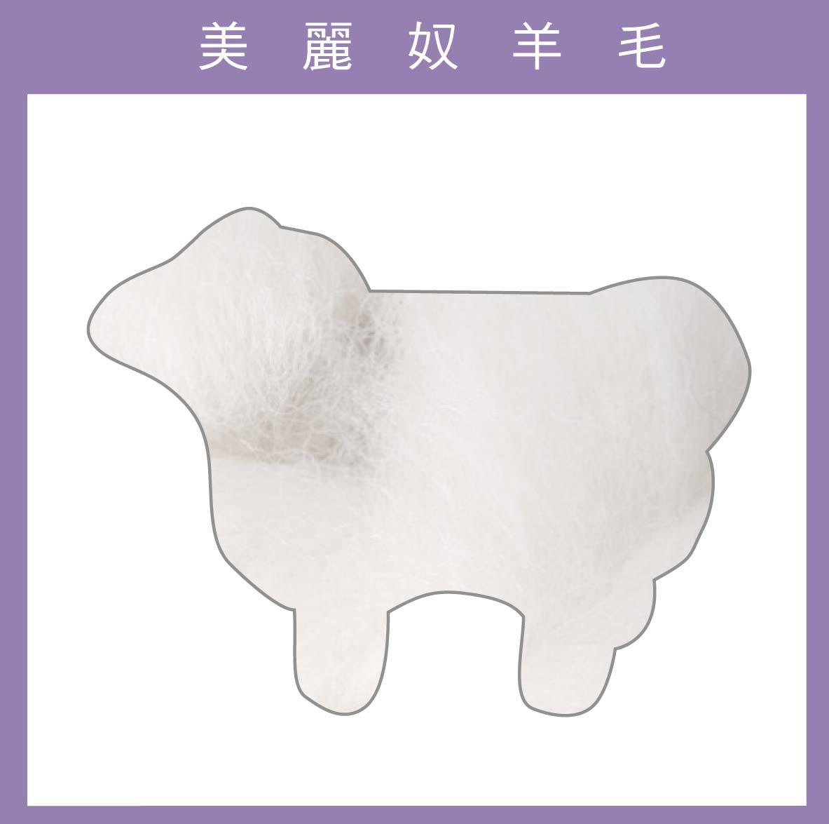 紐西蘭ASHFORD-美麗奴羊毛 M18白色