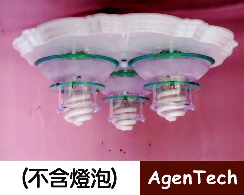 AT-479美術吸頂三燈燈具