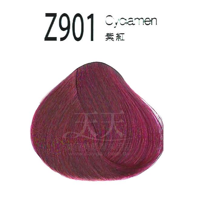 審美家 護髮染髮膏 500ml Z901紫紅 [85768] ::WOMAN HOUSE::