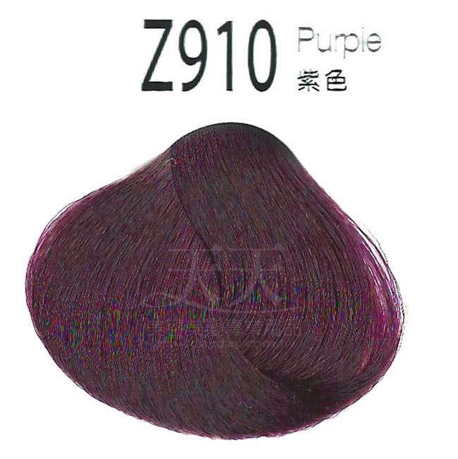 審美家 護髮染髮膏 500ml Z910紫色 [93772] ::WOMAN HOUSE::