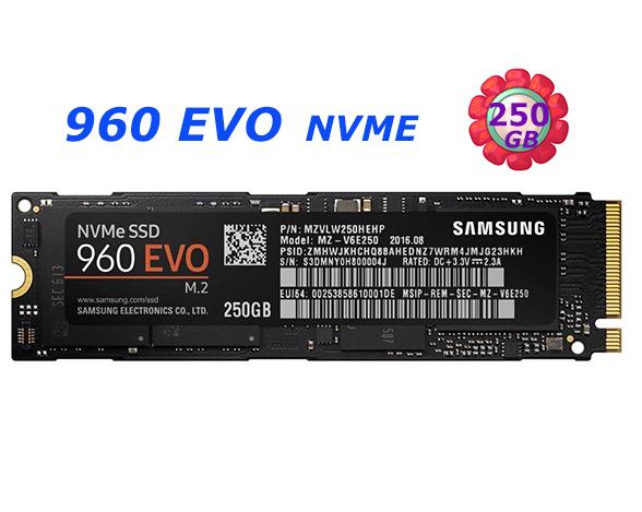 SAMSUNG SSD 250GB 250G 960 EVO【MZ-V6E250BW】M.2 NVMe 固態硬碟