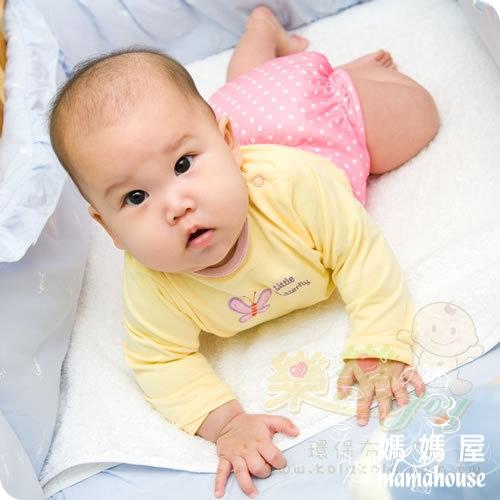 《樂樂環保布尿布兜.釦子款.單一尺寸尿褲兜.J010草莓甜心》  台灣製.NB~XL.從小穿到大