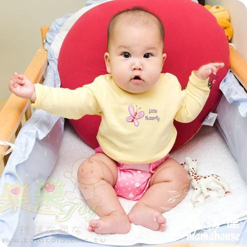 《樂樂環保布尿布兜.魔鬼沾.單一尺寸尿褲兜.J010草莓甜心》  台灣製.NB~XL.從小穿到大