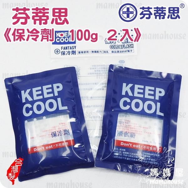 《芬蒂思保冷劑.2入》小型保冷墊.冰寶.食品母乳運送好幫手.各型保冷袋保溫袋適用