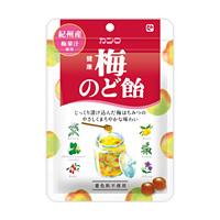 有樂町進口食品 日本KANRO-健康梅子喉糖90g J60 4901351036525