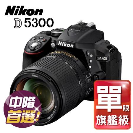 "Nikon尼康 D5300 +18-140mm 公司貨 ""正經800"""