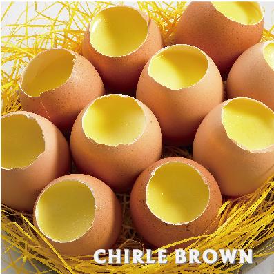 《查理布朗》雞蛋布丁 6入  (自取/消費滿$1500台北市區可免運外送到府)