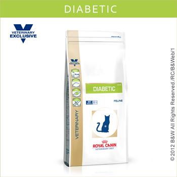 DS46貓糖尿病  1.5kg
