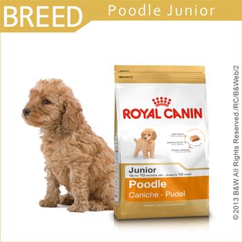 *Mi Gu*法國皇家Royal《PRPJ33貴賓幼犬》3kg 專用飼料
