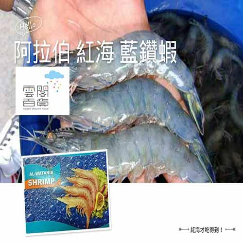 ✡ 阿拉伯 البحر الأحمر 紅海 藍鑽蝦 (2kg約90尾/盒) →【SDF雲閣百貨】