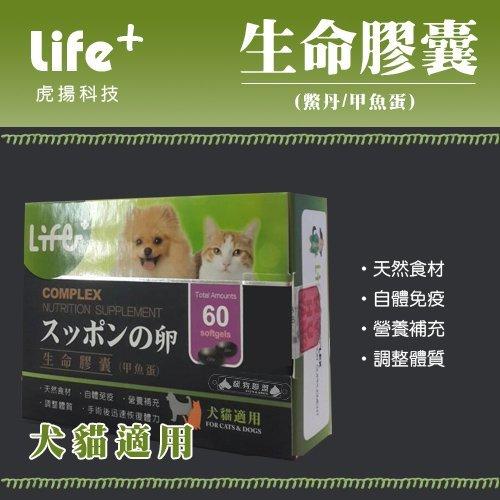 +貓狗樂園+ 虎揚科技【Life生命膠囊。鱉丹。動物性卵磷脂、爆毛丹。60顆】850元