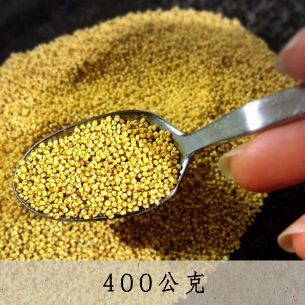 台灣原生糯小米