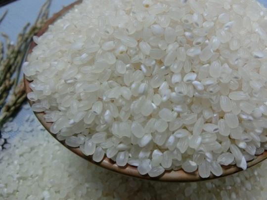 池上米 稻米的原鄉  晶瑩剔透香Q池上多力米600g