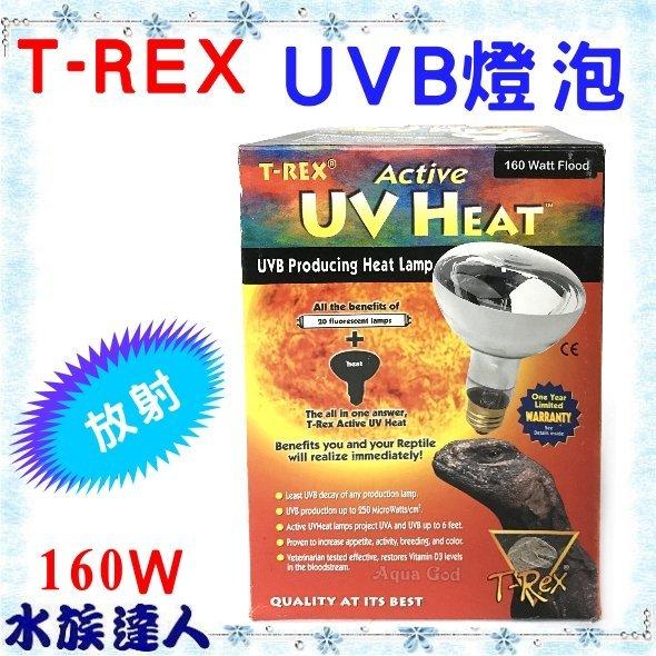 【水族達人】【即期品&NG】美國T-REX《放射型 UVB燈泡 160W 》給寵物溫暖 市價4000↘殺1900