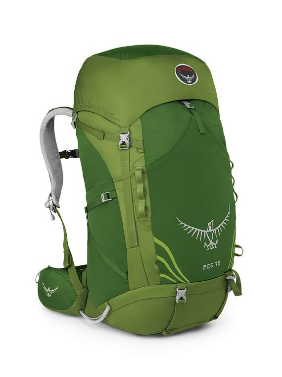 【露營趣】中和 附鋁合金手電筒 Osprey Ace 75公升 11-18歲青少年專用 登山背包