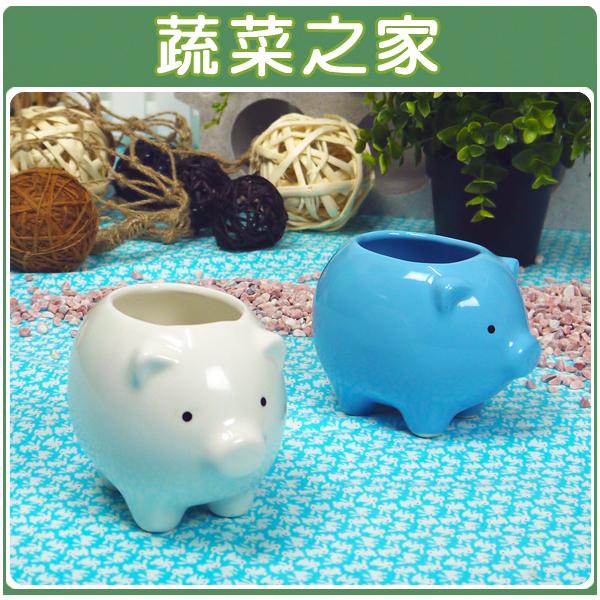 【蔬菜之家004-G11WI】福氣小豬陶瓷造型花盆-白色
