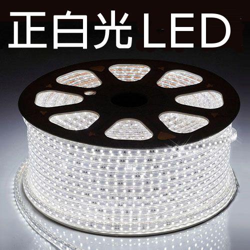 LED燈條/露營串燈/營燈/聖誕燈/營繩照明/露營專用 LED 5050加寬防水燈條 附收納袋/附插頭 正白光 五米起 多長度可選