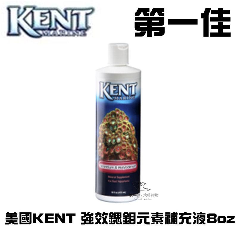 [第一佳水族寵物]美國KENT 強效鍶鉬元素補充液 8oz
