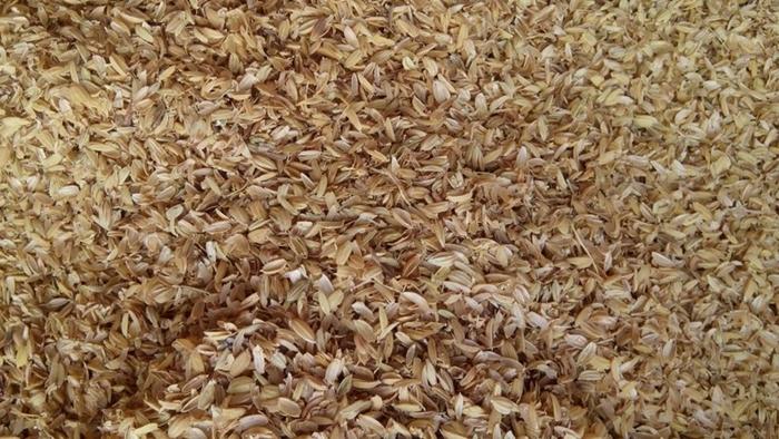 【尋花趣】每包約10公升 稻殼 粗糠 可拌泥炭土有機土 泥土 培養土 使用