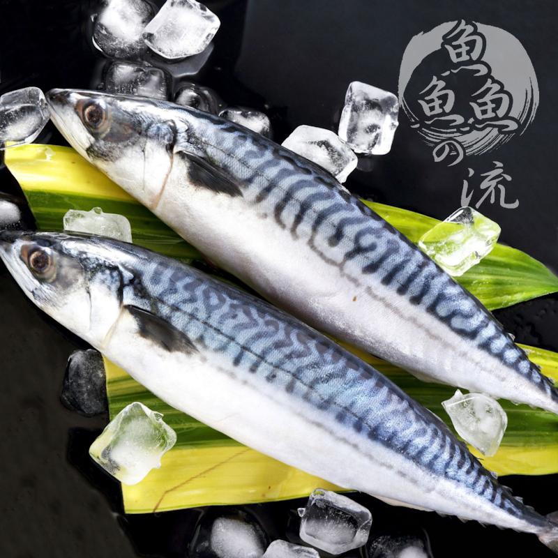 € 團購限定【鮮之流】挪威薄鹽鯖魚(10尾), 360g/尾