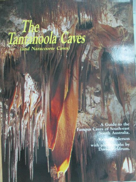 【書寶二手書T1/旅遊_QCY】The Tantanoola Caves