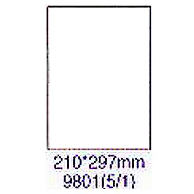 【文具通】華麗牌 阿波羅 影印雷射噴墨用透明護貝膠膜 9801 F6010382