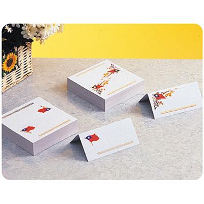 【文具通】坐次卡紙白色 J5010008