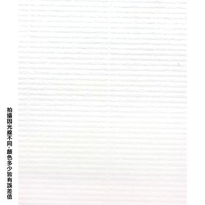 【文具通】四開粉彩紙10 P1330082