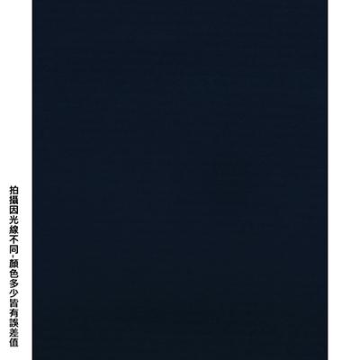 【文具通】四開粉彩紙19 P1330091