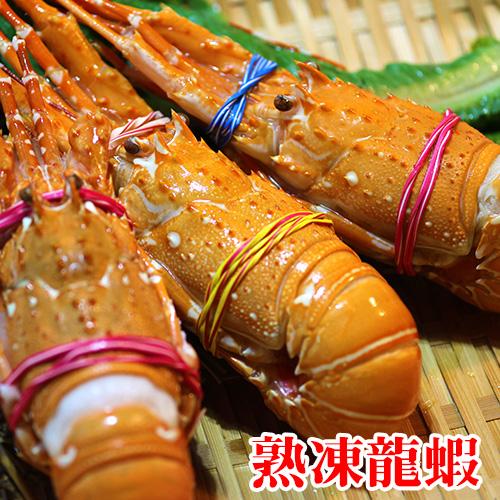 印度熟凍龍蝦/隻。焗烤/火鍋/沙拉皆適合【陸霸王】