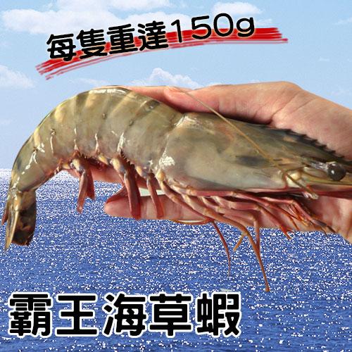 【免運】業界巨大☆深海霸王海草蝦2盒組☆ 3尾/盒。明蝦/霸王蝦/龍蝦/禮盒【陸霸王】