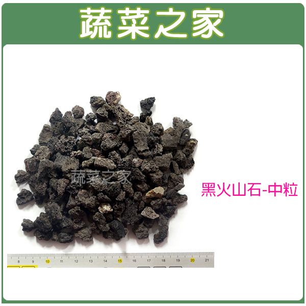 【蔬菜之家001-AA18】黑火山石.火山岩-中粒1公斤分裝包