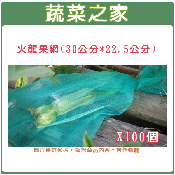 【蔬菜之家】010-A24火龍果網(30公分*22.5公分100個/組) 苦瓜網.水果網.水果套袋