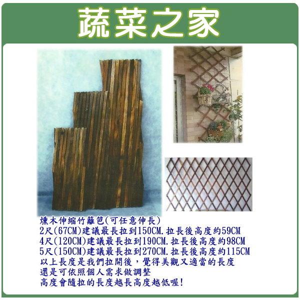 【蔬菜之家011-A19】燻木伸縮籬笆(可任意伸長)67公分