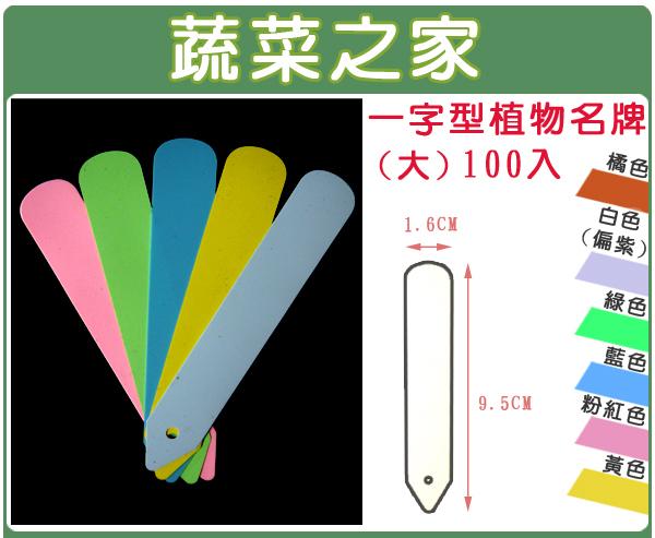 【蔬菜之家011-A25】一字型植物名牌100入/包(大)A級