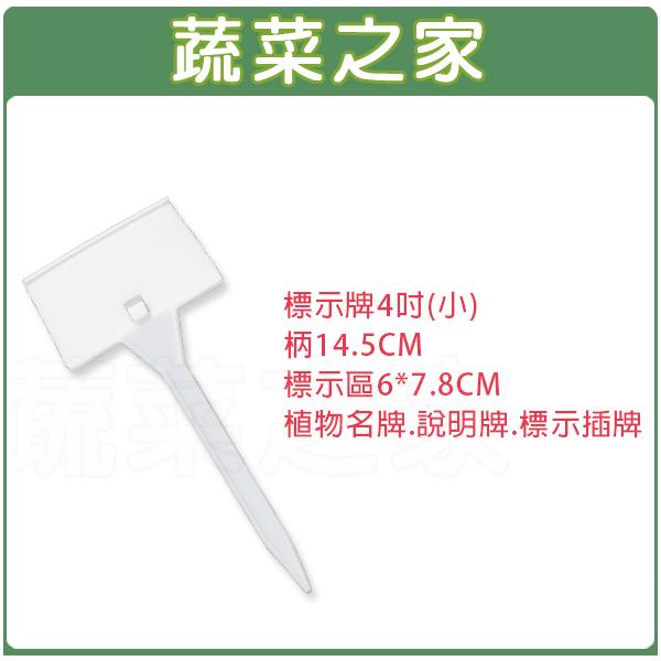 【蔬菜之家011-A37-4】標示牌4吋(小)柄14.5CM標示區6*7.8CM植物名牌.說明牌.標示插牌